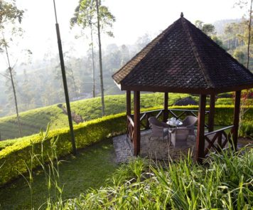 Tea Trails, a Resplendent Ceylon property
