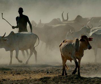 Africa House Safaris Ethiopia
