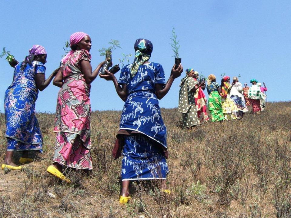 WECAN Women of the Democratic Republic of Congo